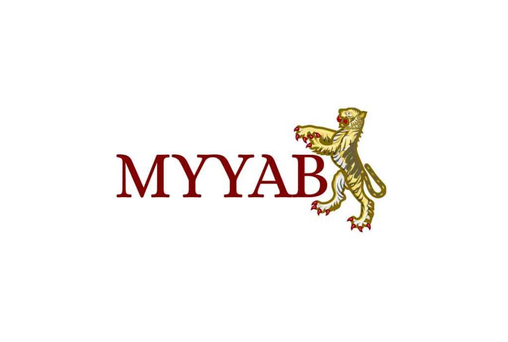 Можно ли заработать с MYYAB? Обзор брокера и отзывы трейдеров